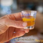 Kombucha-Vinegar-Flu-Tonic-5